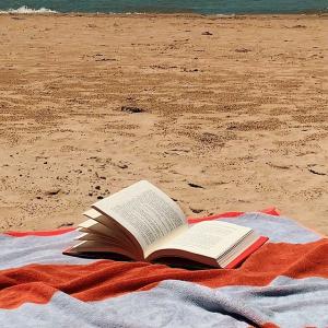 低至2.8折 $14.5沙滩浴巾夏日室内外生活 ins风创新装饰品 $17.5柔软丝绒抱枕