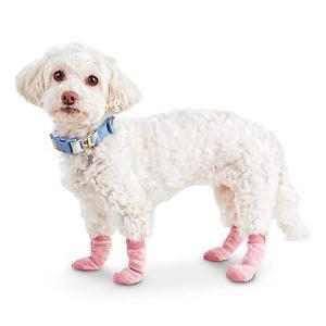 低至5折+额外7.5折Serenity Collection 精选狗狗衣服、玩具、用品等促销