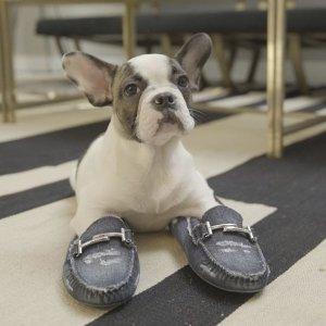 无门槛8折 £264收当家明星豆豆鞋Tod's 全线美包美鞋闪促  收火爆新款双T扣