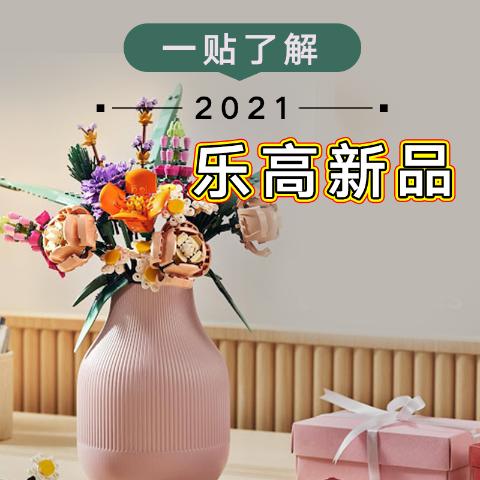 细数50+款 超强送礼指南11.11预热 LEGO 2021年度人气新品全掌握,小白一贴就入门