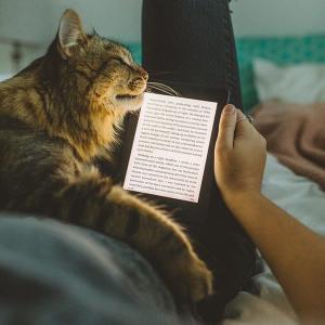 $161(原价$179) 新款首降最后一天:Kindle Paperwhite 经典版 第10代电子书
