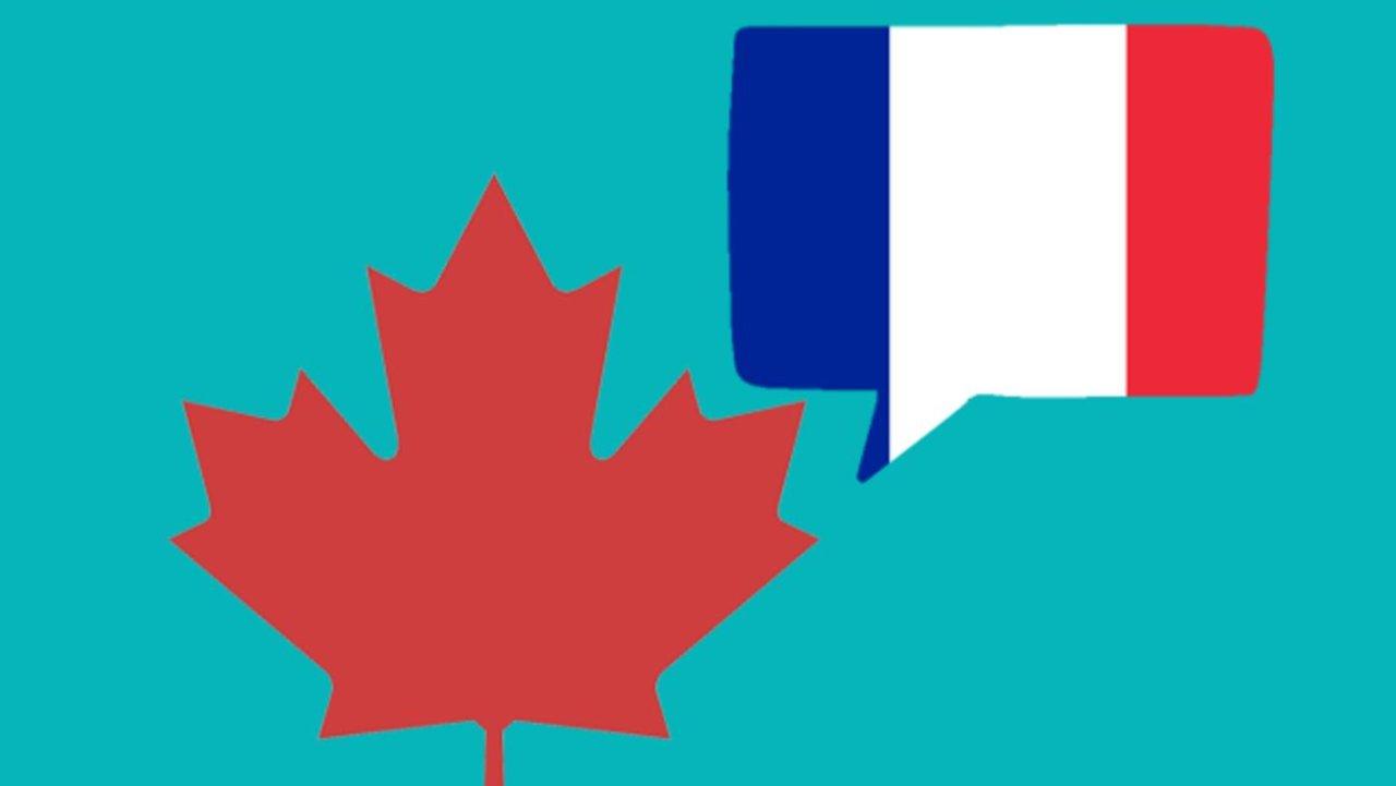 大多伦多地区各大教育局French Immersion项目申请指南 | 英法双语从娃娃抓起