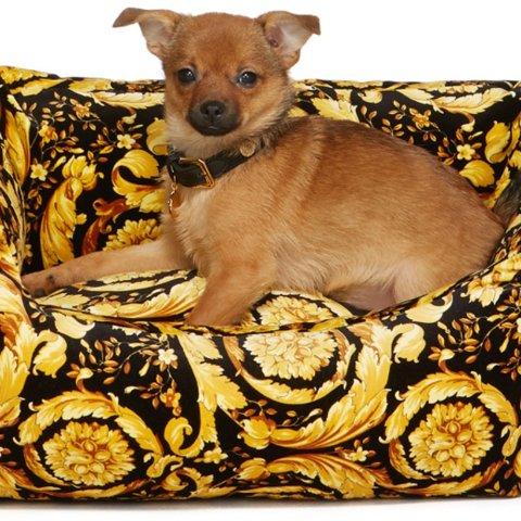 €40收小方巾 €215收Burberry项圈SSENSE 狗子衣服配件专场 活的不如狗系列 天价狗窝闪瞎眼