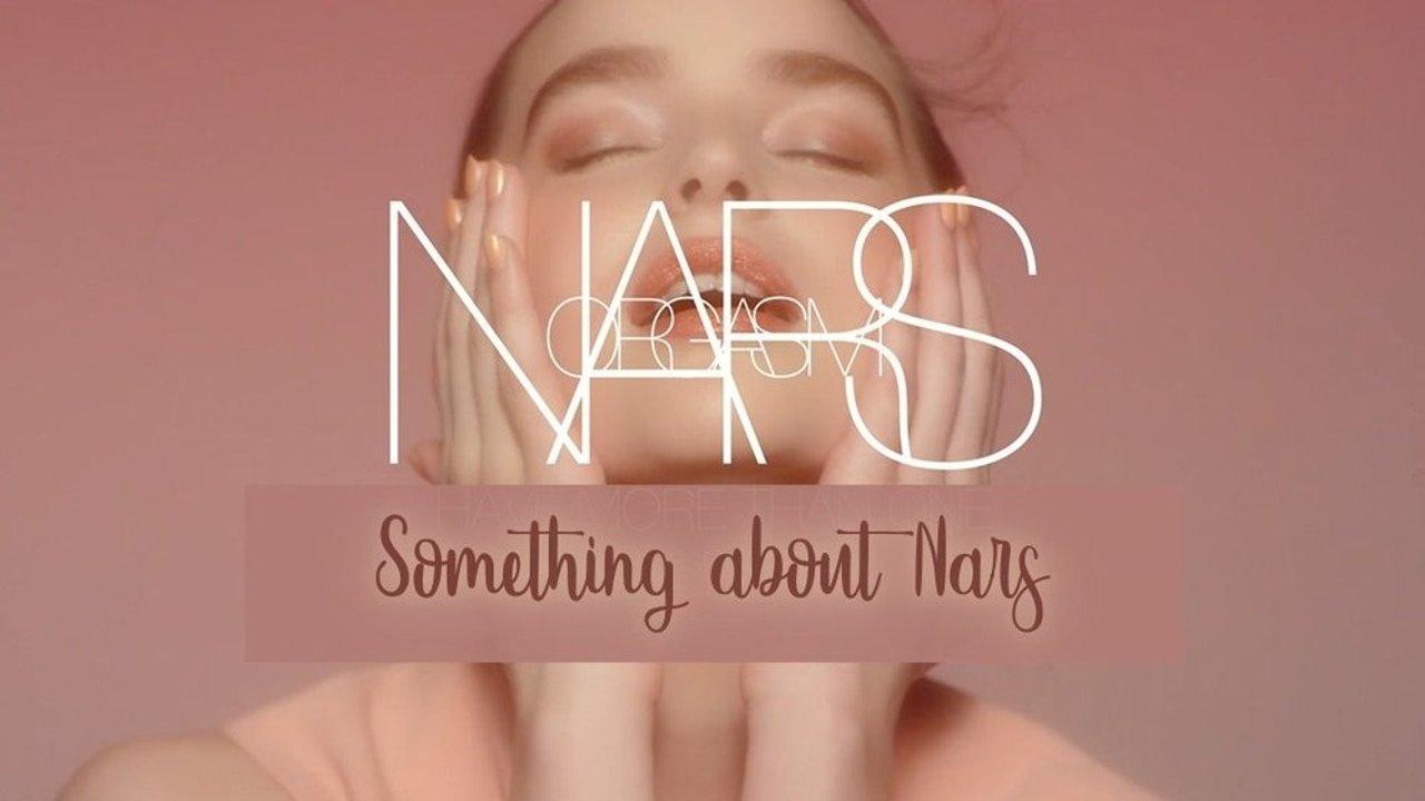 关于NARS的百科知识大全