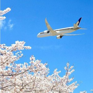 As low as $449 NonstopLos Angeles to Japan Tokyo Roundtrip Airfare