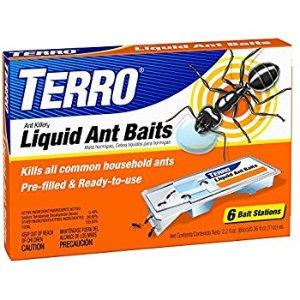 Amazon.com : Terro T300 Liquid Ant Baits - 1 Pack : Home Pest Lures : Garden & Outdoor