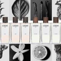 Loewe 001 男士香水
