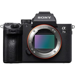 Sony Alpha a7 III Mirrorless Camera (Body Only)