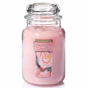 Starting at $14Large Classic Jar Or Tumbler Candle @ Yankee Candle