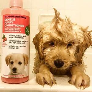 3件$24.99+额外8.5折GNC 精选宠物用品、宠物保健品促销热卖