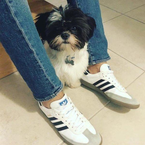 Samba OG 运动鞋 男女同款
