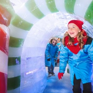 Save 25% Off on TicketsBlack Friday Exclusive: Gaylord Hotels Annual Largest ICE! Exhibition is Coming