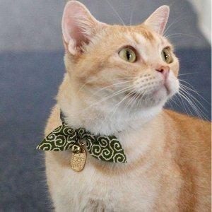 $12.79起Necoichi 日式高颜值猫咪项圈热卖