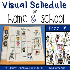 Visual Schedules for School & Home 打印素材