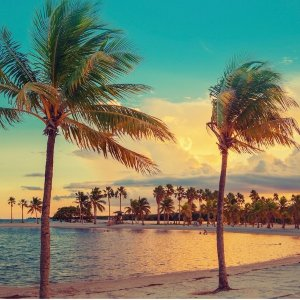 $320Chicago - Miami Hotel + Flight Discount