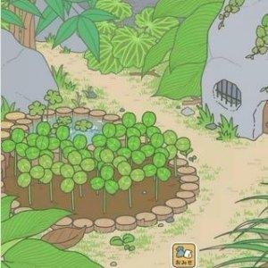 手残也能玩的新方法手游攻略:《旅行青蛙》不调时间 无限刷草大法