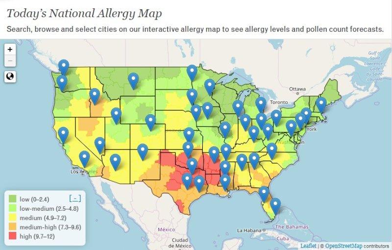 症 治療 花粉