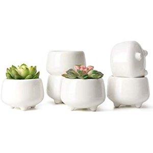 简易小白瓷盆