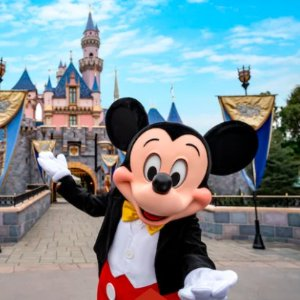 Tickets are only $83 per dayDisney tickets are special for a limited time Essential for summer travel