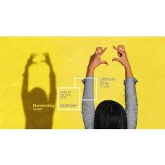 2021流行色 | Pantone权威发布!年度双流明亮黄和极致灰!不知道你就OUT了~