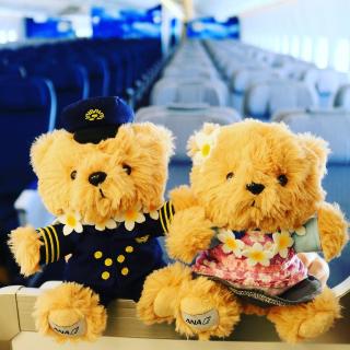 含税$533起 搭乘全日空休斯顿 - 泰国曼谷往返机票超好价