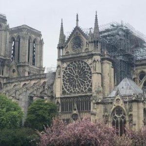 主要文物荆棘冠等已被抢救巴黎圣母院标志性的塔尖顶被烧断 马克龙表示将全力重建