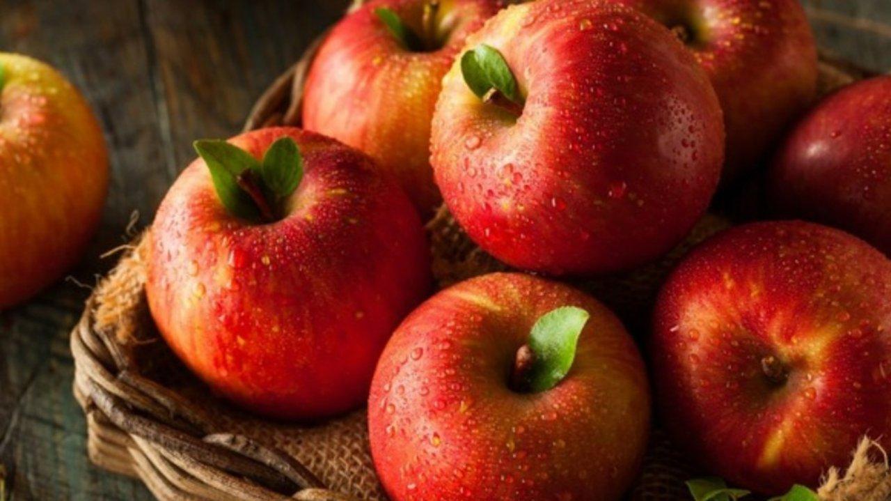 法国超市水果法文对照+如何挑选+饮食禁忌,一篇全送上!