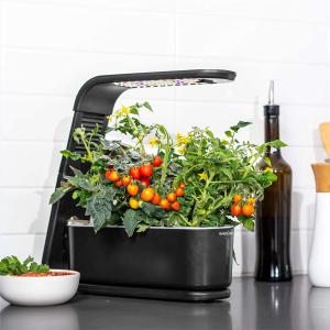 $73.98包邮(原价$129.95)送营养液AeroGarden 室内果蔬水培装置 附送罗勒、欧芹、莳萝种子