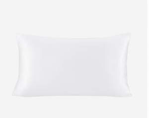 19 Momme 100% Mulberry Silk Pillowcase Terse