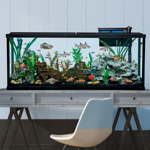 Up to 70% OffPetSmart Fish Tanks & Aquariums Sale
