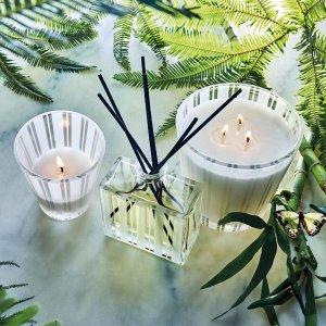 Nest绿竹蜡烛