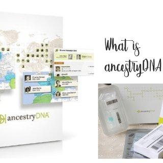 基因检测闹哪样?| 玩转AncestryDNA攻略