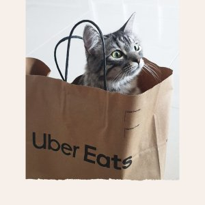 满$10免配送费 可用100次UberEats 新一轮delivery fees开送 为期1月
