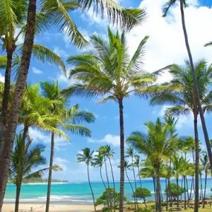 Stay 4 nights and get the 5th FreeExpect Better in Hawaii Hotel sales @Hilton
