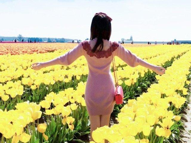 💕浪漫的西雅图,美丽的花和海