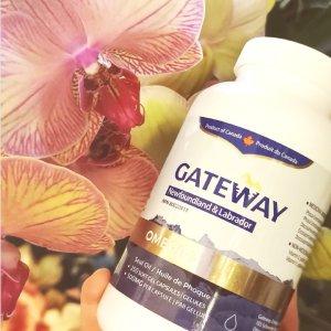低至8折 $10收120粒装父亲节礼物:Gateway 最珍贵的Omega-3 营养给最爱的人