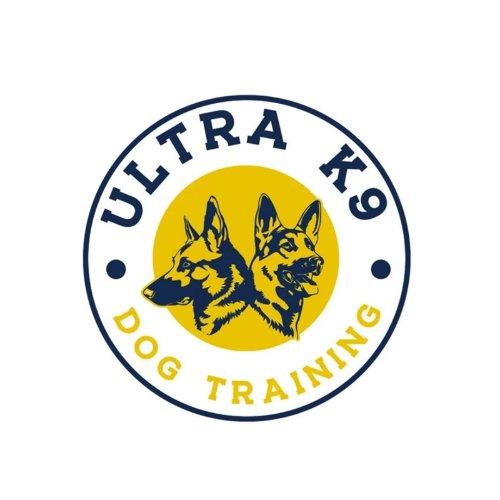 Ultra K-9 专业华人犬训体验(微众测)