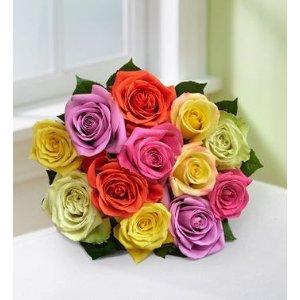 彩色玫瑰12支
