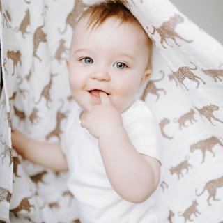 20% OffNew Arrivals: Aden + Anais Swaddles, Blankets, Clothes and More Sale @ Albee Baby