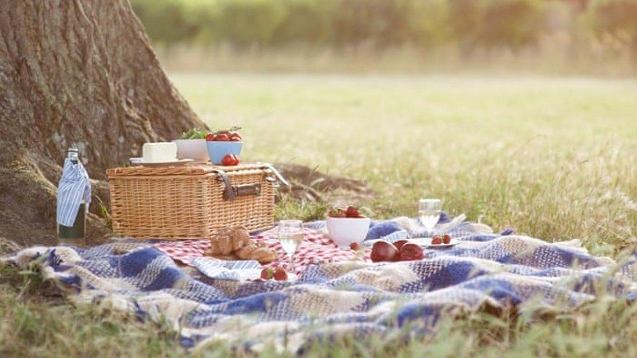 巴黎野餐的好去处 | 藏在大都市里的诗意美景!