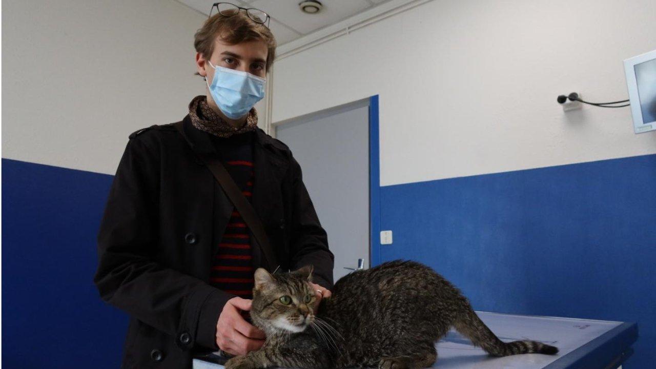 在法国给猫打个疫苗就花了100欧?!