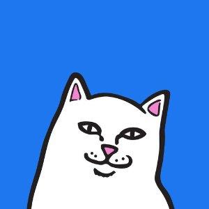 免费下载, 免费使用来, 干了这杯RIPNDIP 中指猫专属官方iMessage表情包