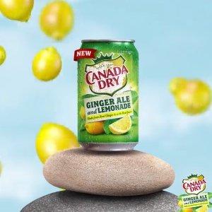 新增Limeade口味Canada Dry 夏季限定款回归 一箱36瓶 共三种口味
