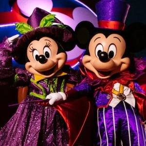 As low as $713Disney Cruise Lines Halloween and Christmas Specials
