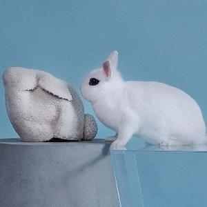 6折+额外8折 低至$181Loewe 萌萌兔子包热卖 毛茸茸超可爱