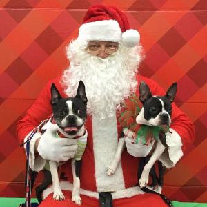 December 7, 14, 15Petco Photos with Santa Event