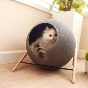粉丝分享养猫攻略提高猫咪幸福感的小神器 铲屎君必读