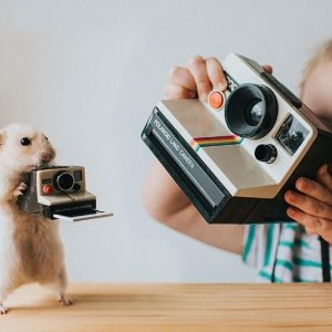 低至6折 £84收宝丽来拍立得UO 复古相机专场热卖 Polaroid拍立得记录生活小美好