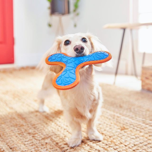 Up to 50% OffChewy Selected Dog Toys Flash Sale