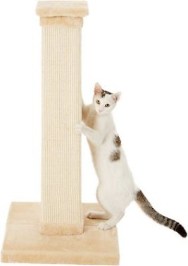 Frisco 33.5-in Scratching Post/Tower, Cream - Chewy.com